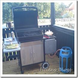 Weber gasol grill