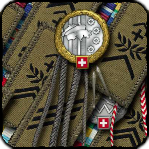 Schweizer Armee Dienstgrade