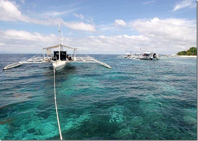 Reefsofalona