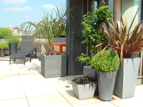 Modern Roof Garden Ideas