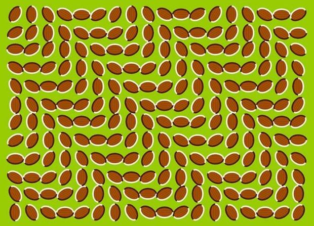 Ilusão de Ótica 04