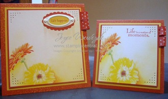 MDS GERBERA CARD DUO