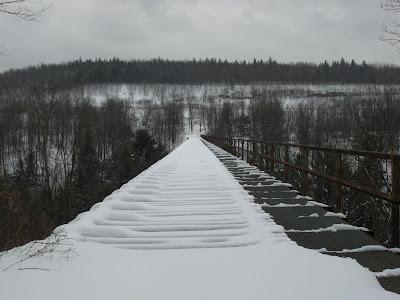 Snow Shoe Rail Trail Picture%20648