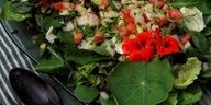 salada_de_folhas_verdes_528x262_opção 5