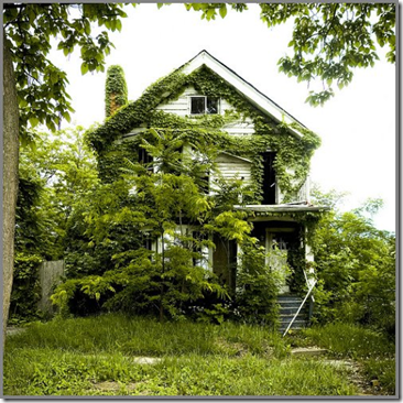 return-to-nature-detroits-feral-houses-3
