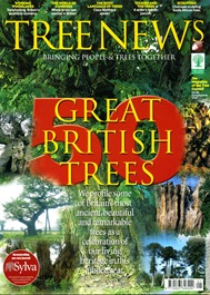 TREE NEWS3