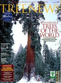 TREE NEWS4