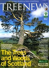 TREE NEWS5