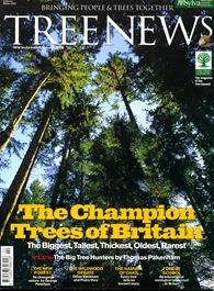 TREE NEWS6