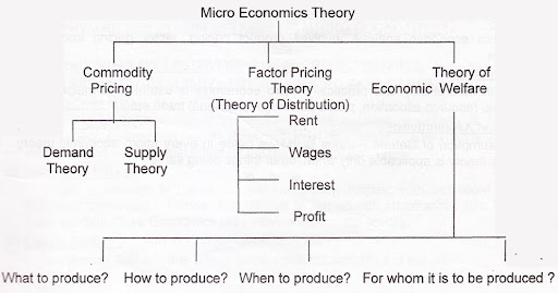 Microeconomics Meaning Scope Features Uses Limitations