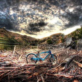 Driftwood floor by Eric Demattos - Transportation Bicycles ( water, driftwood, bike, sunset, blue bike, river )
