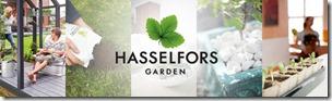 hasselfors