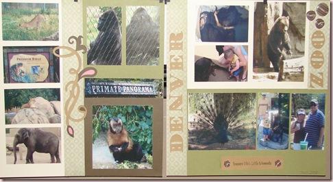 Denver Zoo Blog Pic