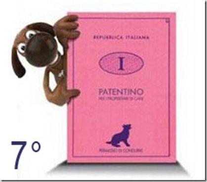 Patentino-cani7