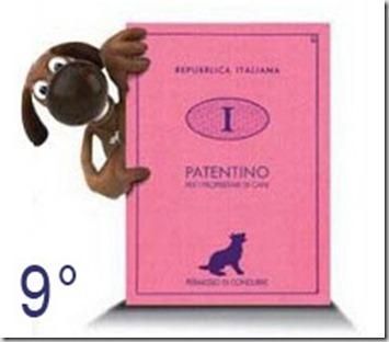 Patentino-cani9
