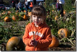 Punkin in the pumpkin patch