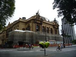 Cãonhecendo São Paulo (106)