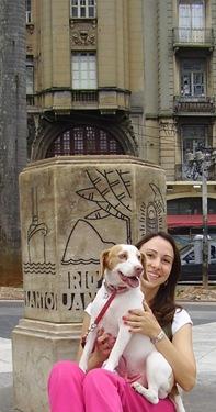 Cãonhecendo São Paulo (197)