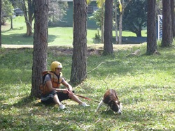 Pet's Adventure 3 (99)