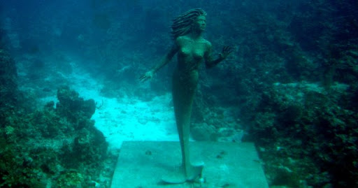 http://lh4.ggpht.com/_iRCt-m6tg6Y/SeITxeasnqI/AAAAAAAAGkk/mFEOgFhUUAU/best-diving-place-16.jpg
