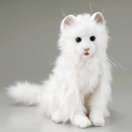 http://lh4.ggpht.com/_iRCt-m6tg6Y/Sk8cimZWH4I/AAAAAAAAIrk/JS6z26CSWmQ/kucing-robot-cat.jpg