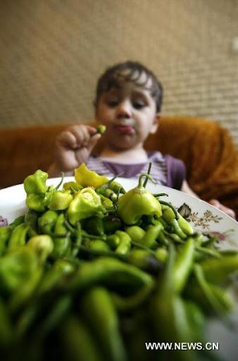 Naaman Amer, Pemakan Cabe Termuda di Dunia