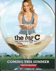 Big C, The (2010)