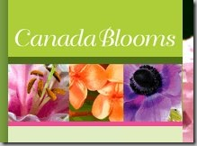 temp_canadablooms