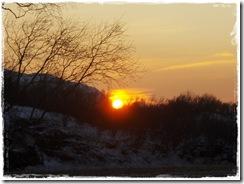 solen 2010