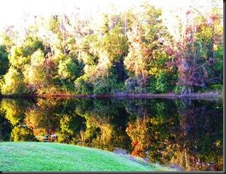 Old Sugar Mill and Florida Fall 095