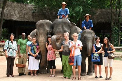 IMG_7865_group_elephants_4x6x72.oP4VxivoqgZm.jpg