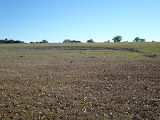 A typical closed landfill requires continuous maintenance. Here bare areas are photographed and reseeding is recommended to the owner.