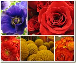 oct30flowers