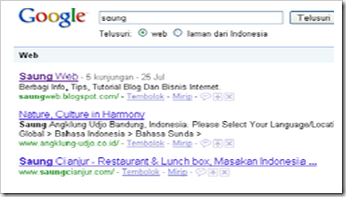SEO Saung Web