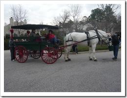 Horse&BuggyRide