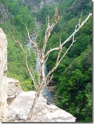 Tallulah Gorge  (10) 2nd set01
