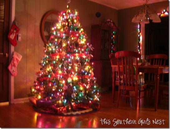 december 2009 015