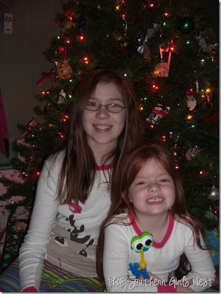 december 2010 008