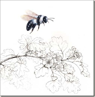 Pencil And Leaf Two Lovely Bees For Liz The Early Bumble Bee Grey Mining