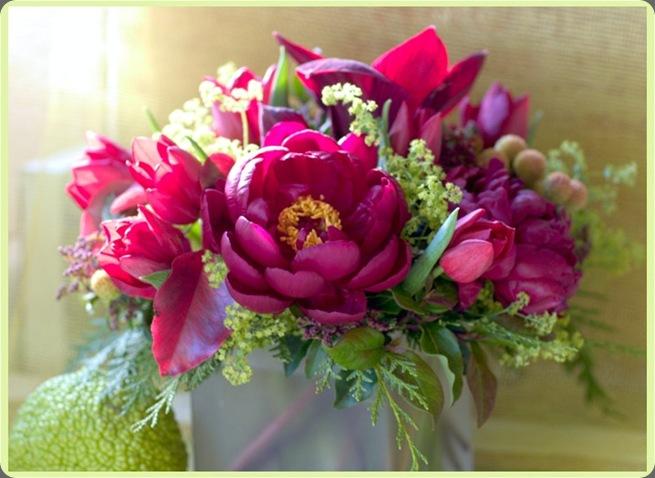 florali_win001 florali