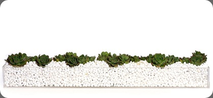 FA45_2_2_700x700 succulent trough floral art