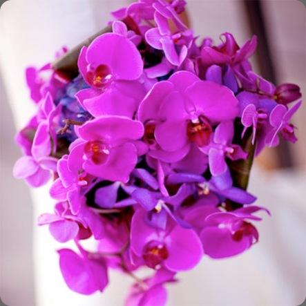 bouquet9 gingerleaf floral