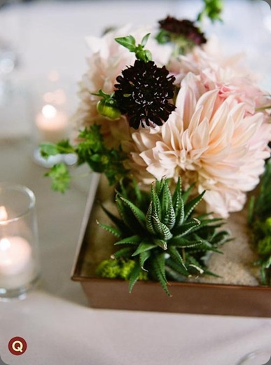 succulent_centerpiece qweddings and rosehip flora