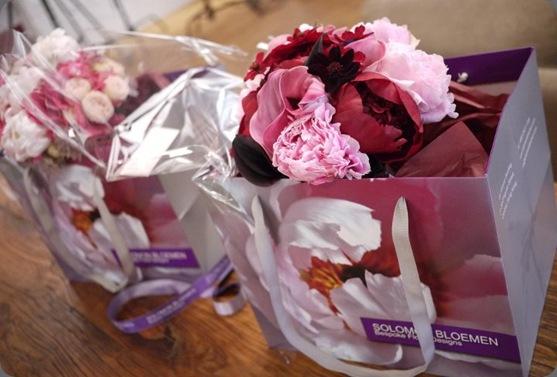 solomon bloemen1
