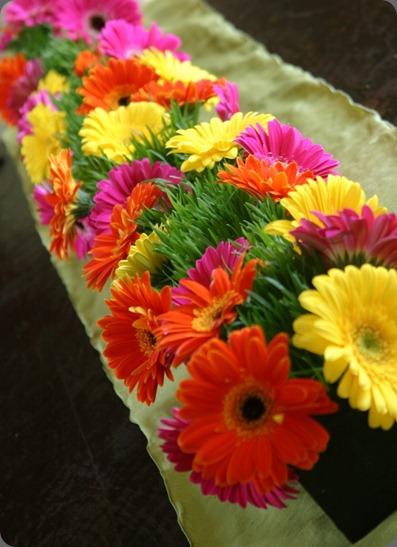 IMG_4006-754x1024 panacea flowers