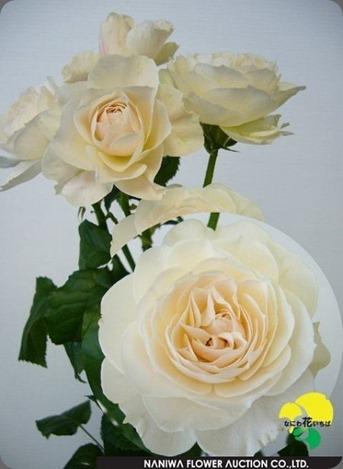 vintage silk spray rose japan bloom