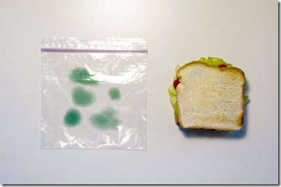 moldy_sandwich_bag_1