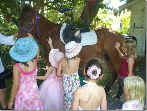 17 sarah bday horse