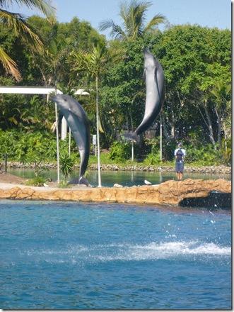 21 seaworld dolphin show
