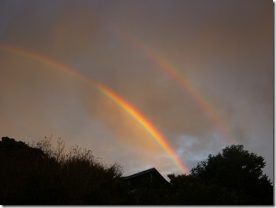 14 rainbow